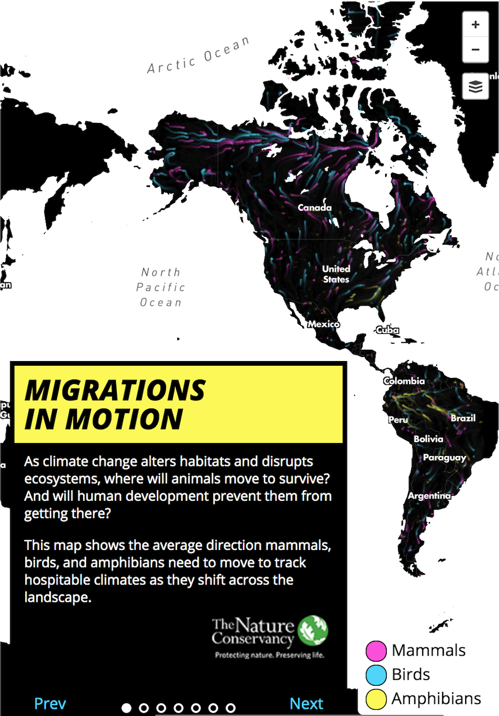 migration-in-motion